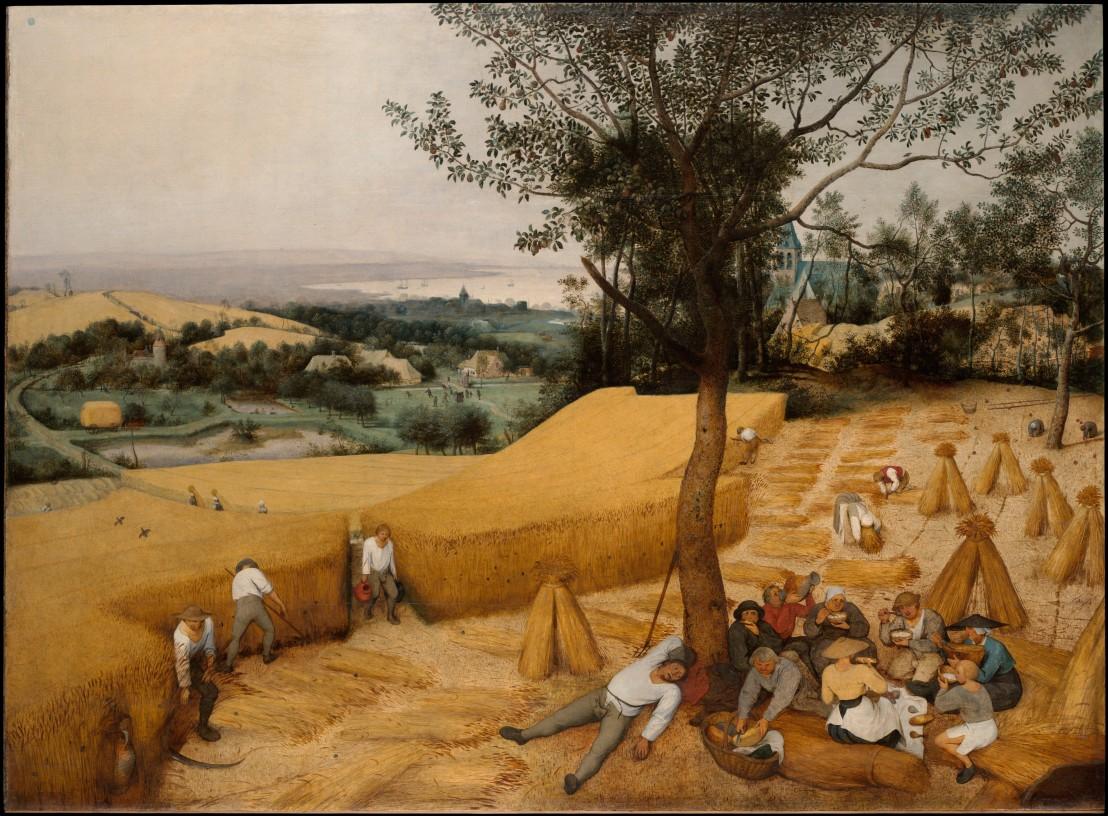brueghel Harvesters